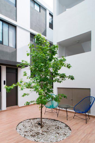 Jardin edificio tecnicos